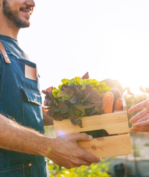 farmer with box of produce